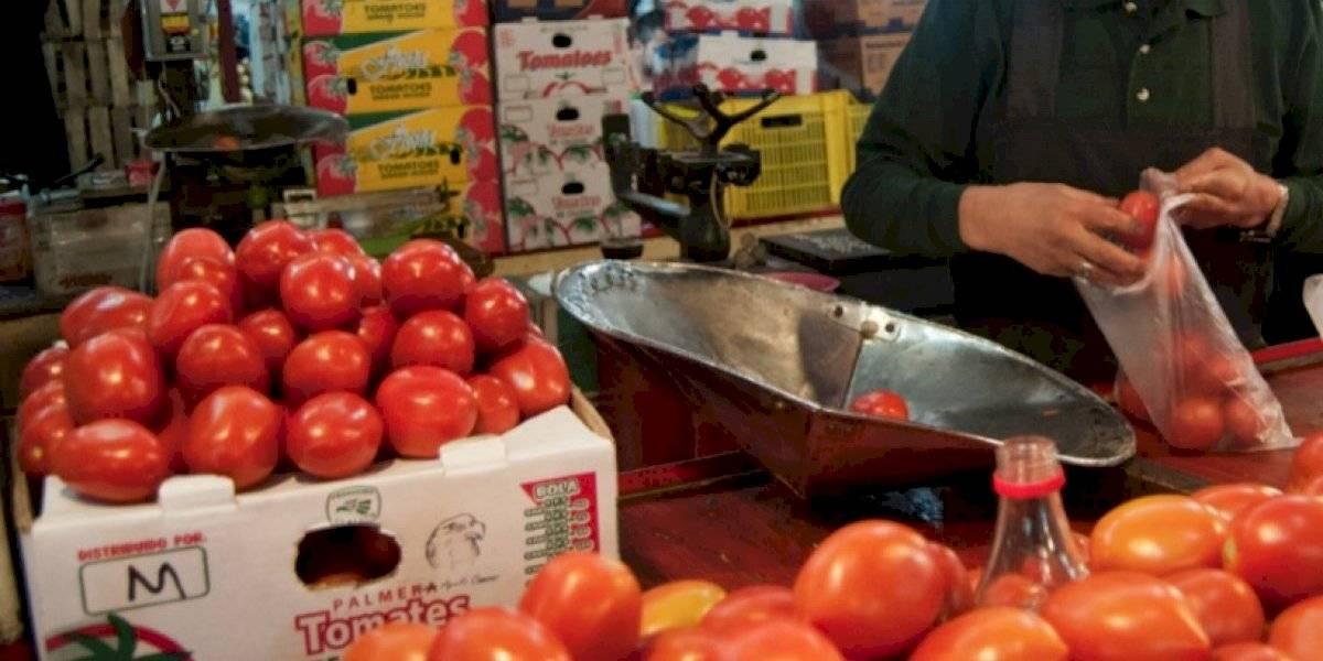El 19 de septiembre darán resolución sobre arancel al tomate: SE