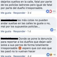 Policías se roban un perro en Colima