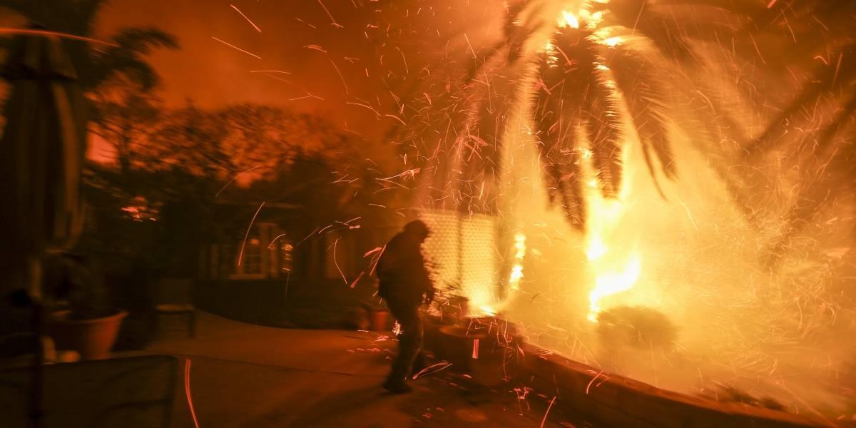 Se eleva a 50 la cifra de muertos — Incendios en California