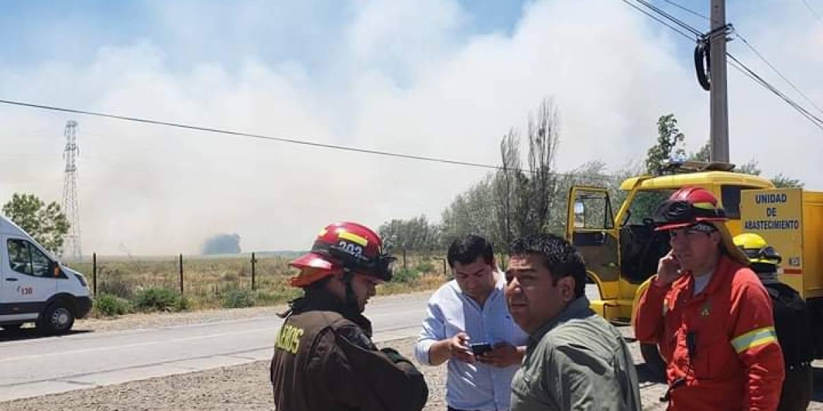 Onemi declara alerta roja en Melipilla: incendio de pastizales se acerca a zona poblada