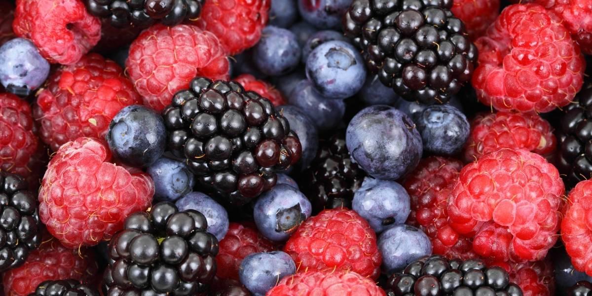 Hipertensão: Estes 4 snacks são essenciais para adicionar na dieta e controlar a pressão
