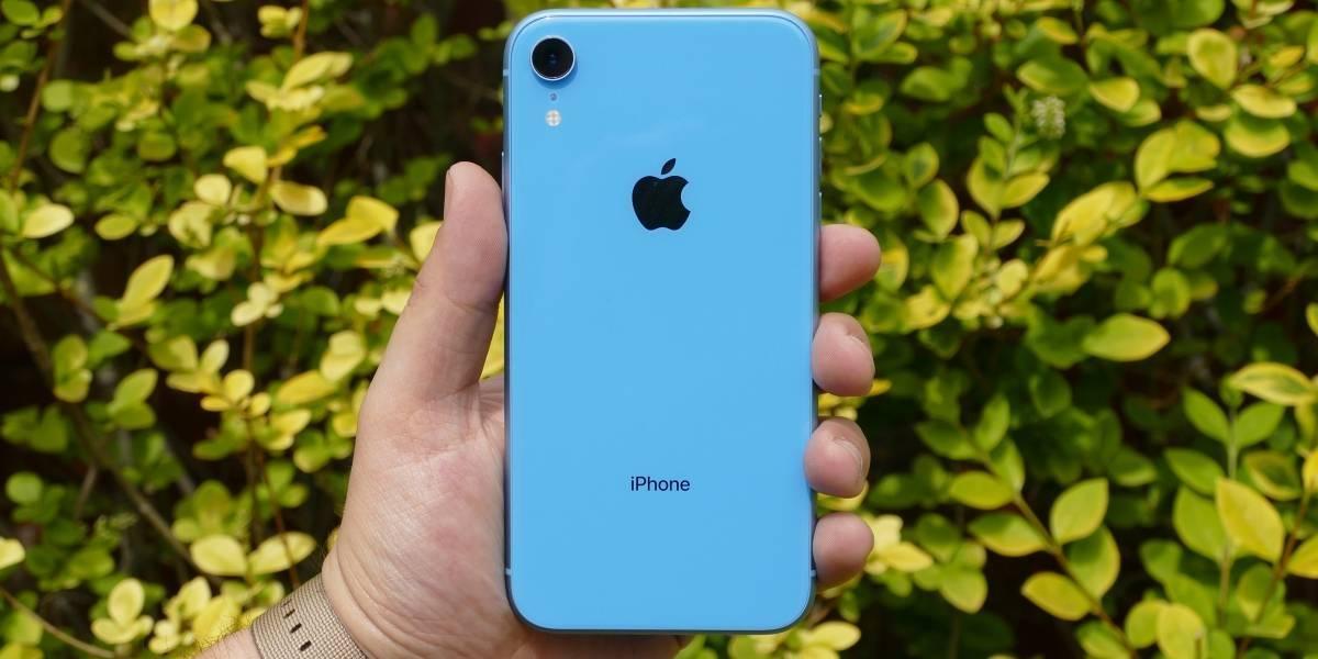 Apple mostra as melhores imagens compartilhadas por proprietários do iPhone XR