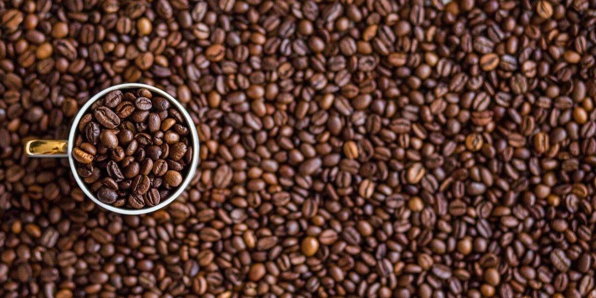 Cafeína: como esse estimulante do café pode ajudar a aliviar a dor