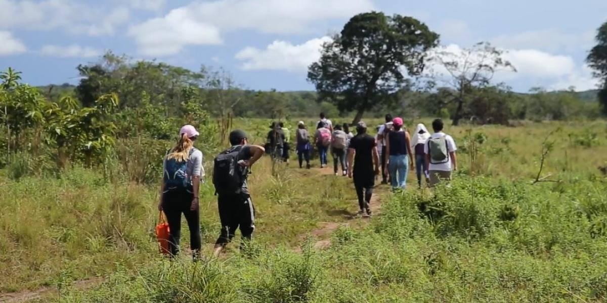 Conozca a los guardianes de la riqueza natural del Guaviare