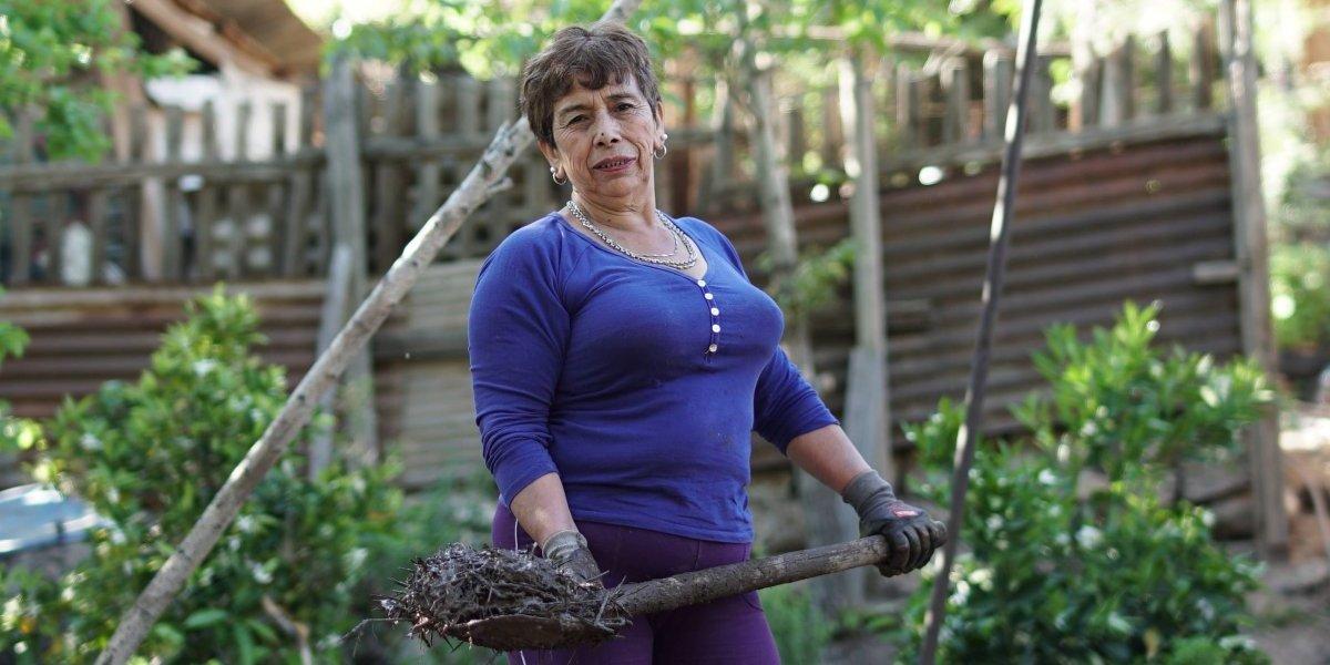 Heroína chilena repara casas de adobe gratis