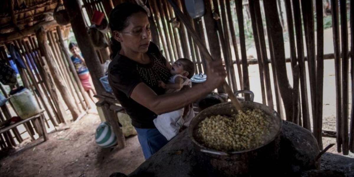 Resaltan necesidad de establecer acciones y fuentes de financiamiento para combatir la desnutrición en el país