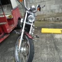 Moto Harley Davidson de Roxana Baldetti