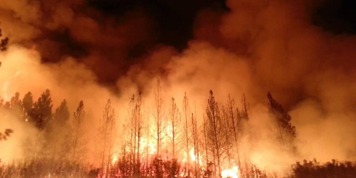 Físicos chilenos podrían tener la clave para detener propagación del fuego en incendios