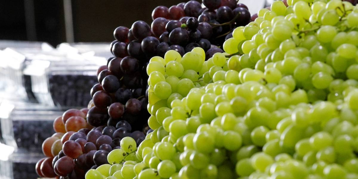 Lista para venderse: Indonesia levanta restricciones para las exportaciones de seis frutas chilenas