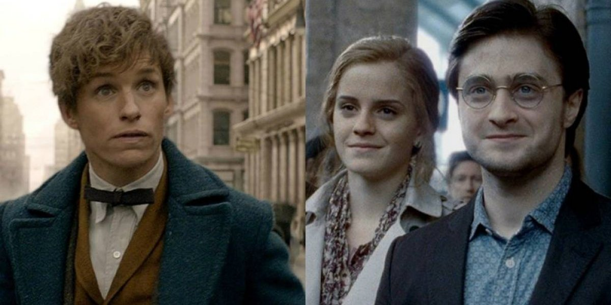 Animais Fantásticos: Personagem querido de 'Harry Potter' poderia aparecer como criança nos próximos filmes