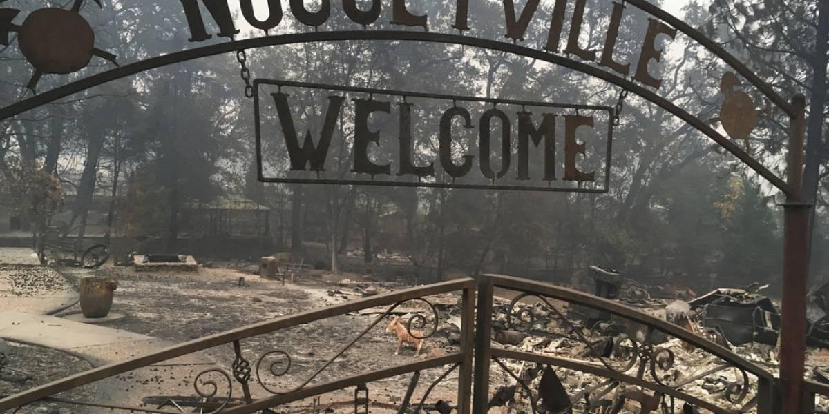 Publican lista de desaparecidos en incendio de California