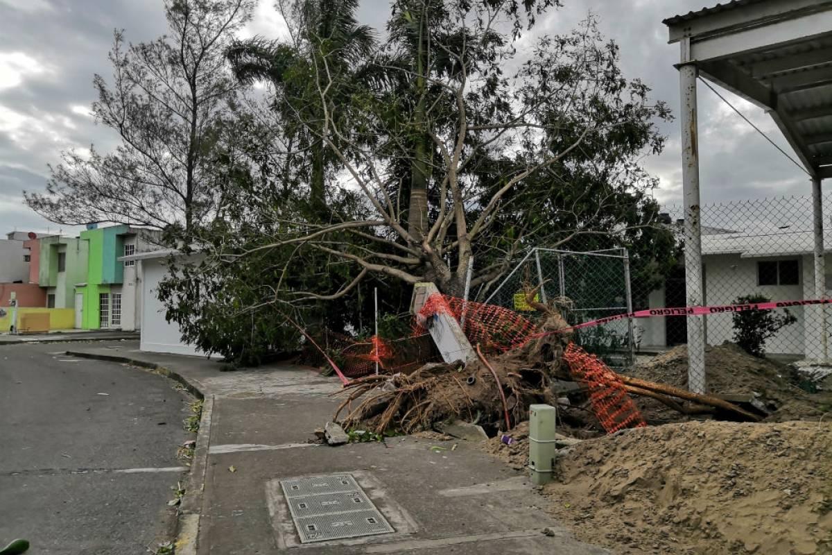 En Boca del Río, Veracruz, hubo fuertes rachas de viento Foto: Cuartoscuro
