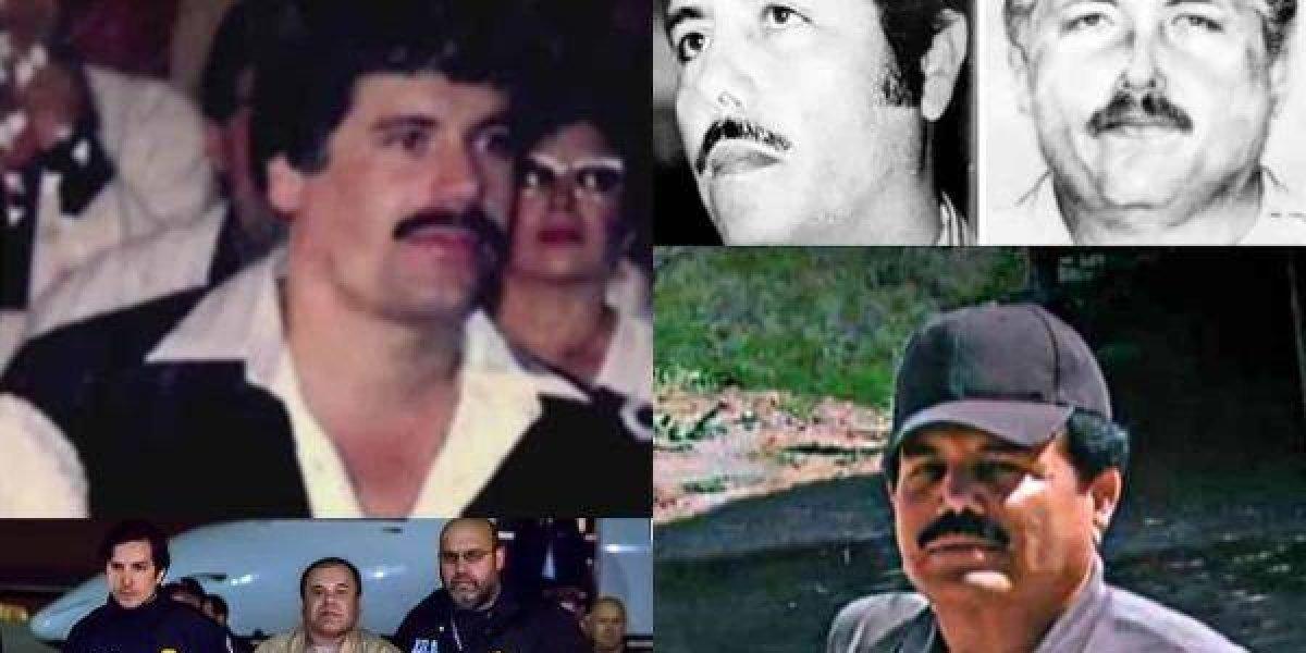 """La misteriosa relación entre """"El Mayo"""" y """"El Chapo"""""""