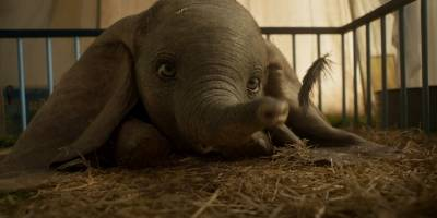 Walt Disney Pictures liberó el segundo avance del esperado remake live action de Dumbo, película dirigida por el reconocido cineasta Tim Burton