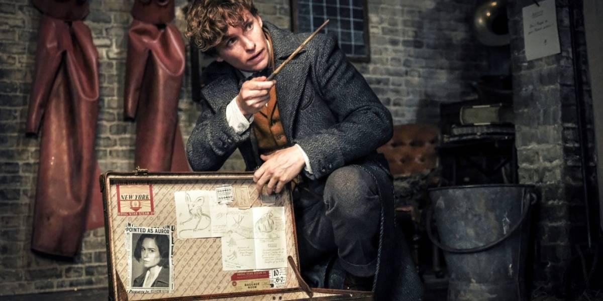 """""""Animales fantásticos: Crímenes de Grindelwald"""": una rara mezcla de maravillas"""