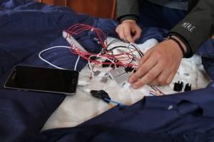 Celda piezoeléctrica