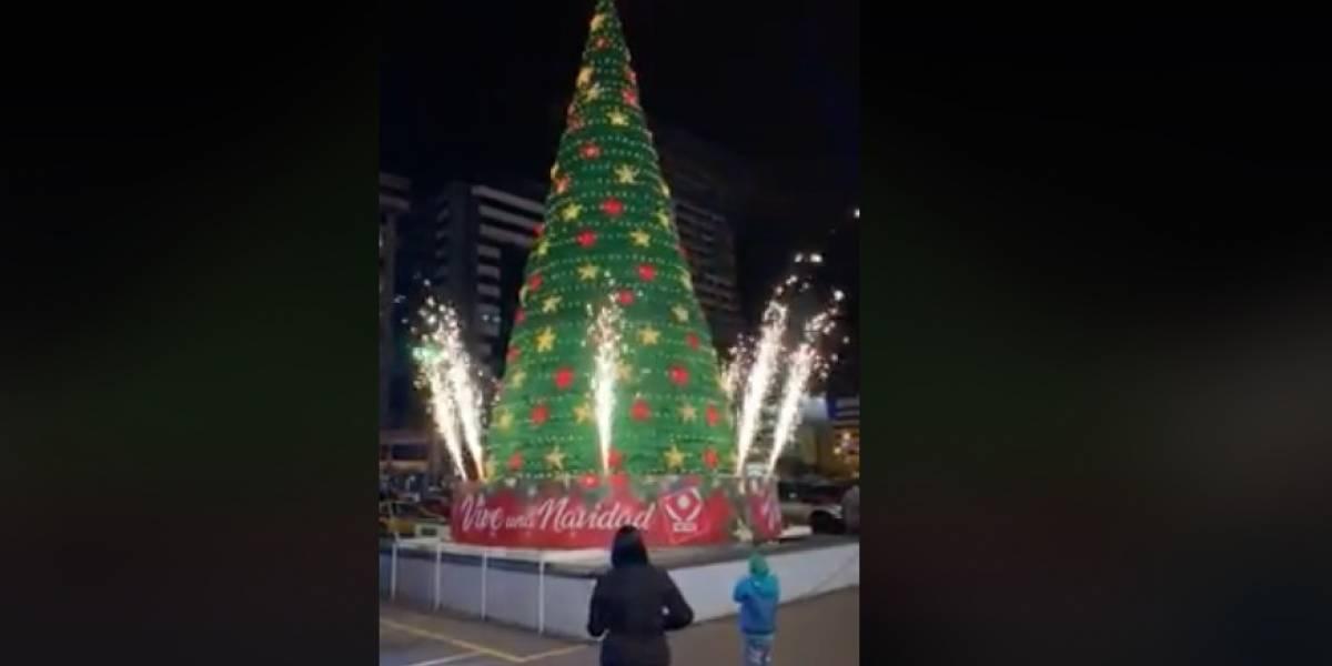 CCI encendió el árbol de Navidad con villancicos y juegos pirotécnicos