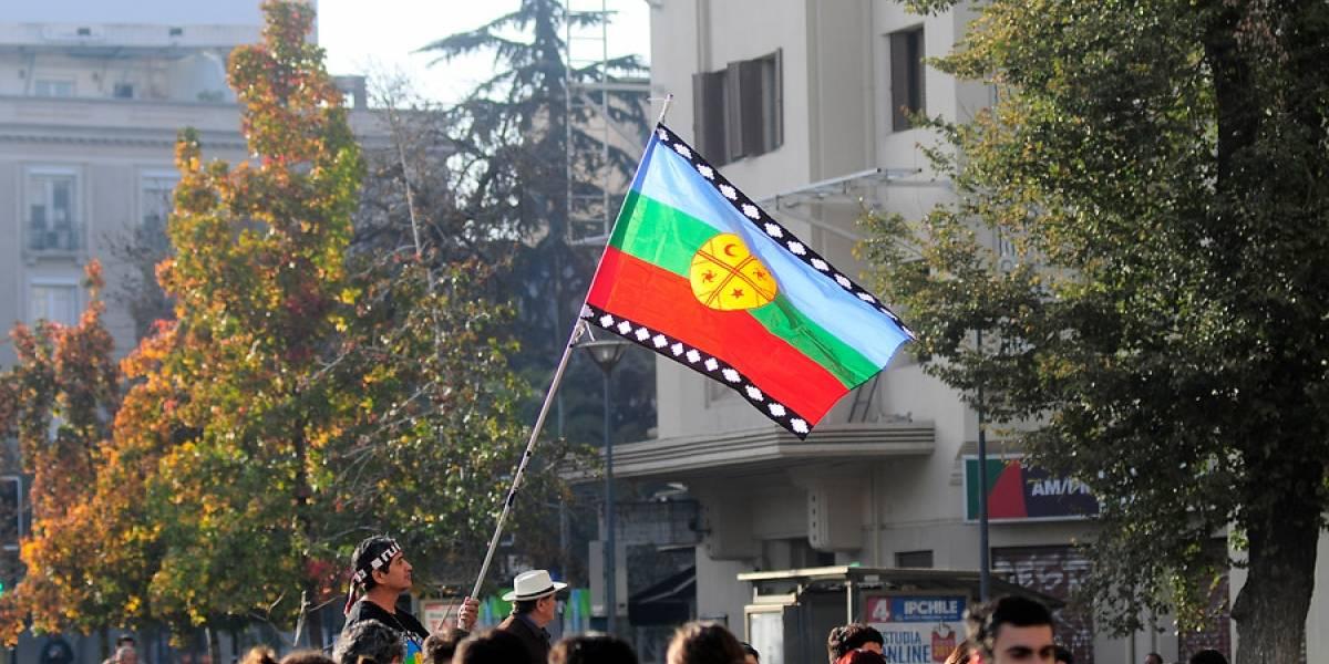 Conflicto en la Araucanía: ONU solicitó al Gobierno realizar una investigación exhaustiva por la muerte de Catrillanca
