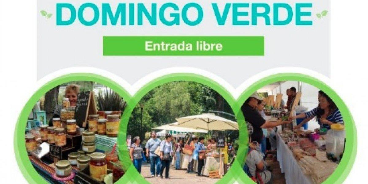 Habrá domingo verde en los bosques de la CDMX
