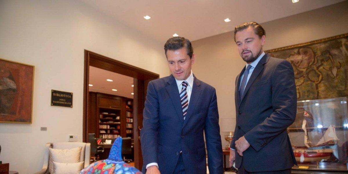 Semarnat reconoce a DiCaprio por su compromiso con la vaquita marina