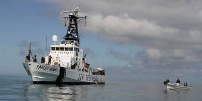 Esfuerzos para el rescate de la vaquita marina