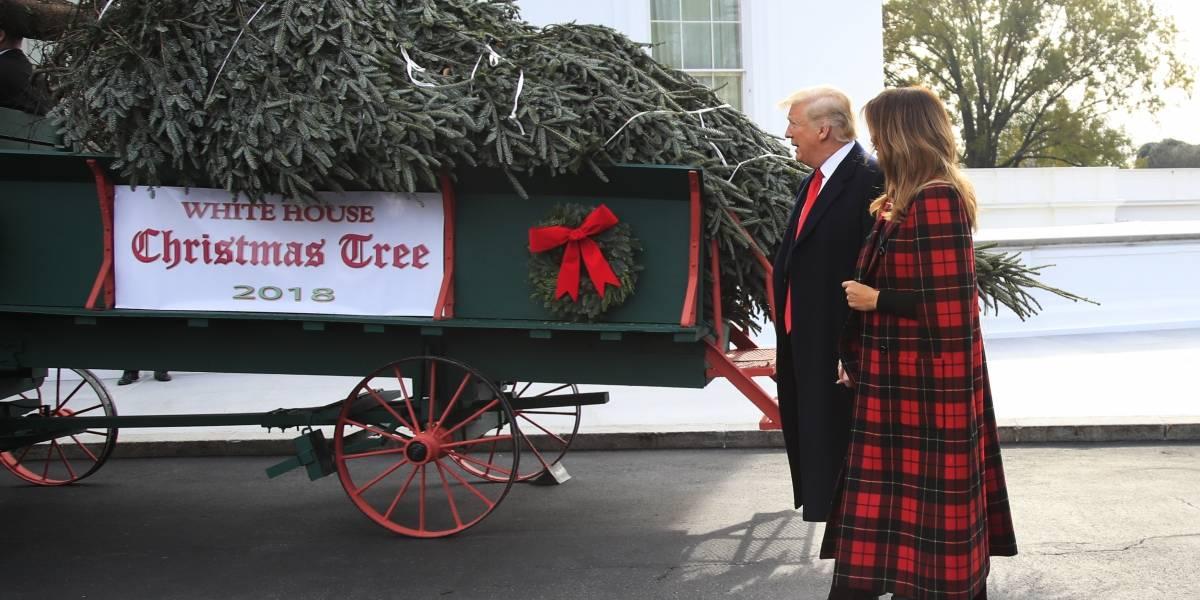 Por primera vez, Trump recibe el árbol de Navidad de la Casa Blanca