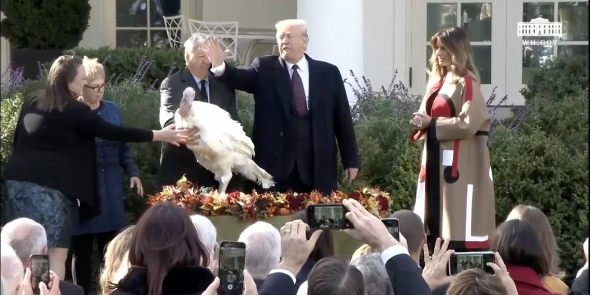 Trump perdona a dos pavos por el Día de Acción de Gracias