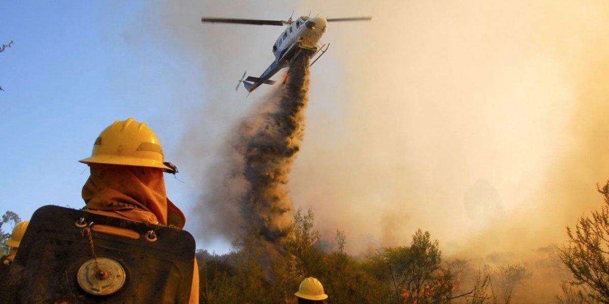 Región de Valparaíso atiende la emergencia: primer alerta roja forestal por incendio en el cruce Colliguay