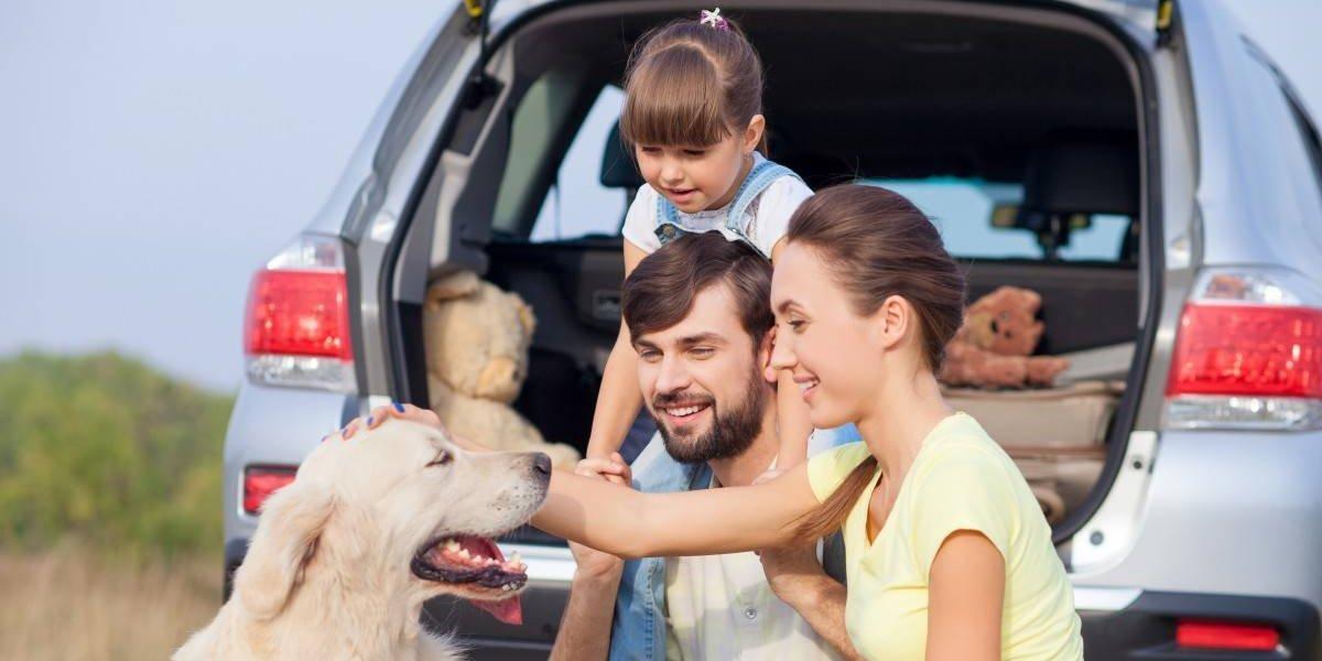 Sixt Chile lanza primer servicio rent-a-car para mascotas