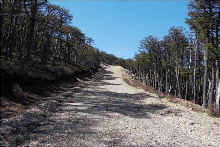 ¡Humanos otra vez! PDI investiga quiebre de fósiles / Gentileza Red Regional No + Mineras En La Patagonia