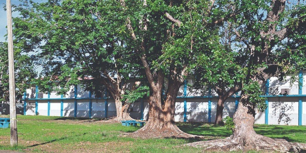 De voluntario a contratado en el DE gestor cierre de escuelas en Nueva Orleans