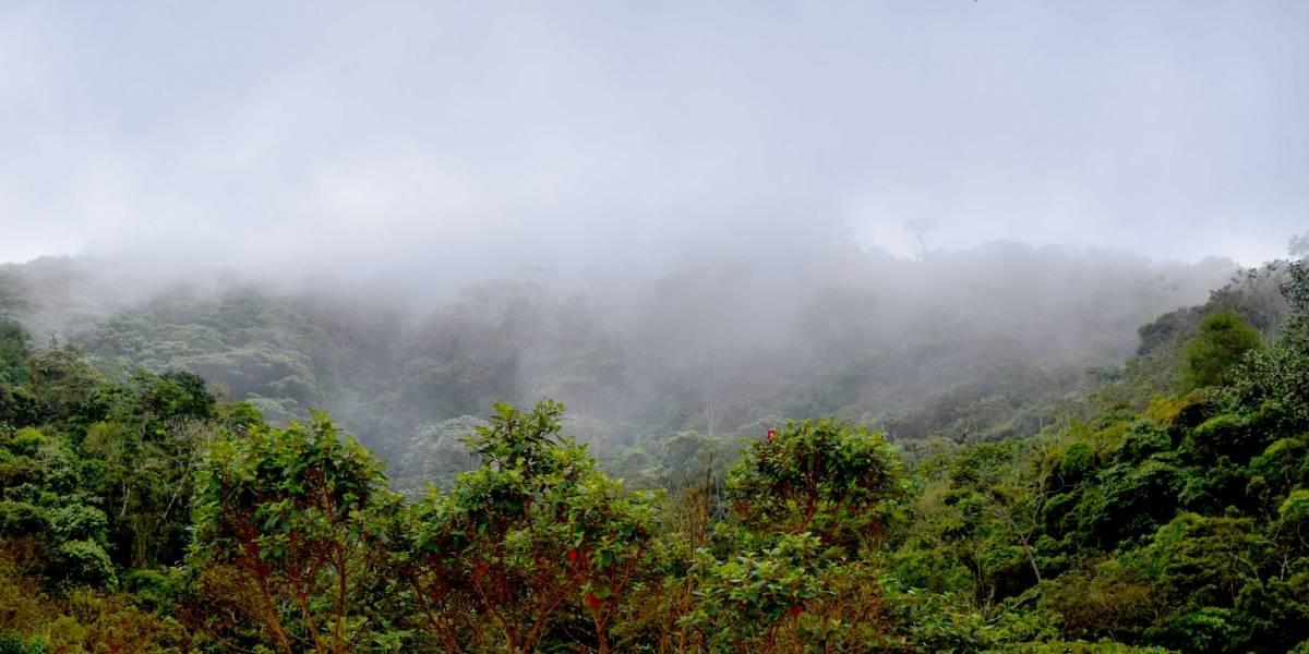 Un emprendimiento colombiano comprometido con el cuidado del agua