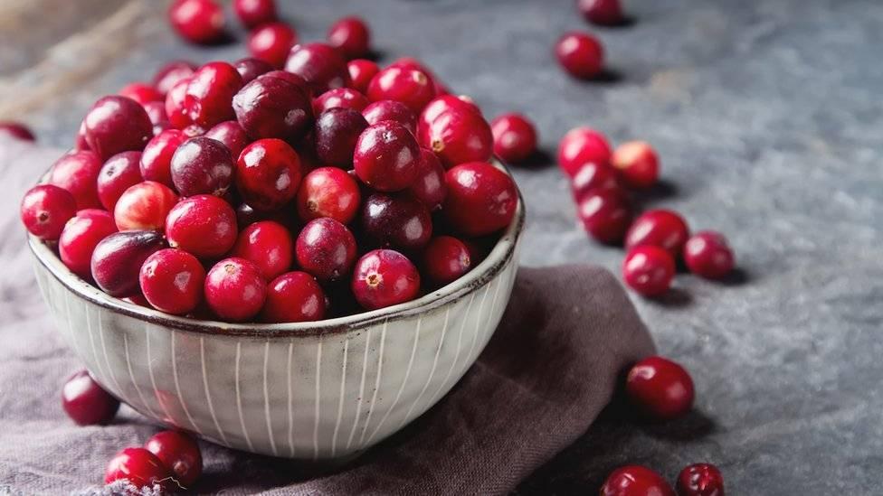 104435690cranberries-9a2c91beac33a3e2cfc18235c99f525e.jpg