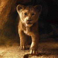 Las primeras imágenes del Live Action de 'El Rey León'