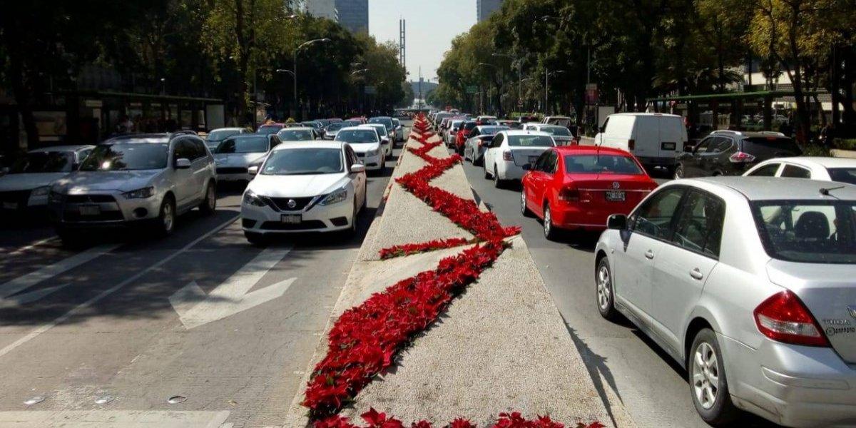 FOTOS: Reforma se pinta de rojo con 200 mil nochebuenas