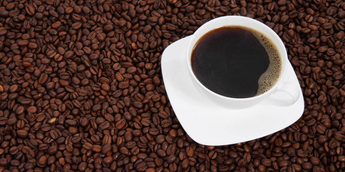 Qual a dose de café recomenda para um dia de treinamento?