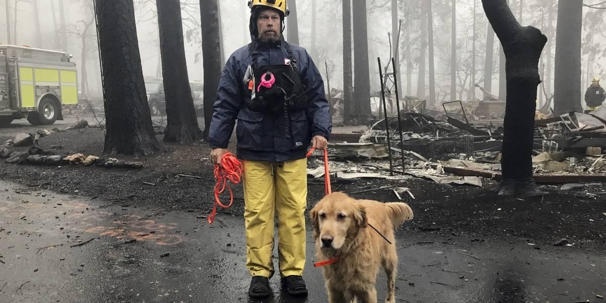 Contienen enorme incendio en norte de California