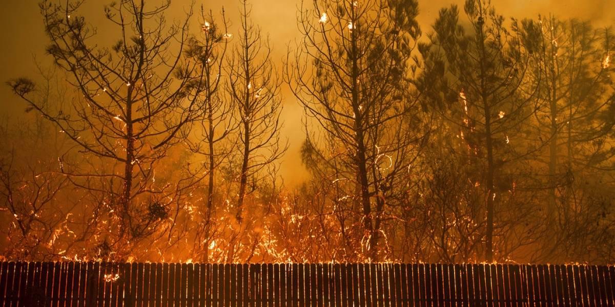 Reporte: Vendrán peores desastres naturales para Estados Unidos