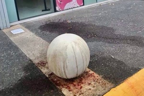 """""""Sangre"""" en oficinas de la Procuradora de la Mujer"""