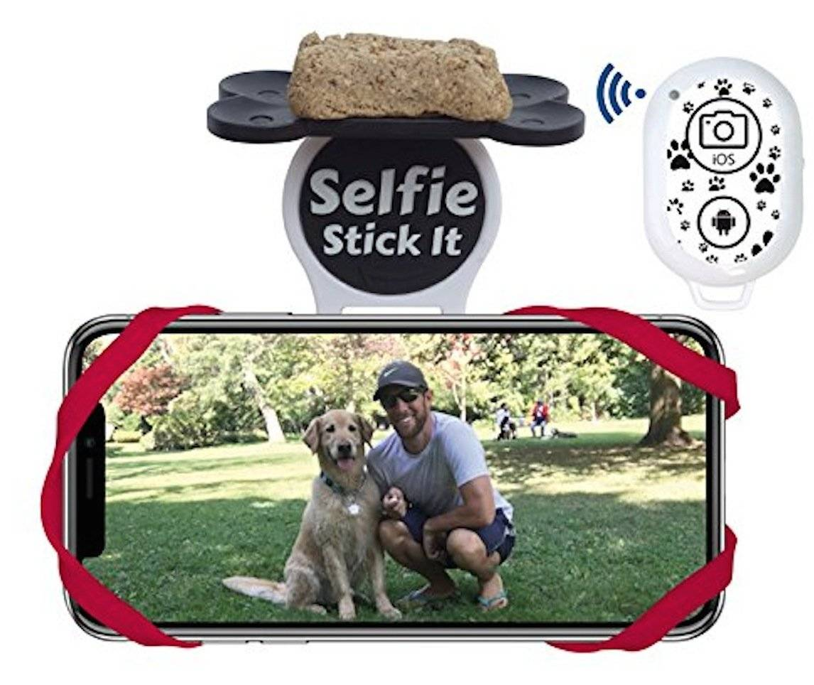 Quik Pod Pet Selfie Stick