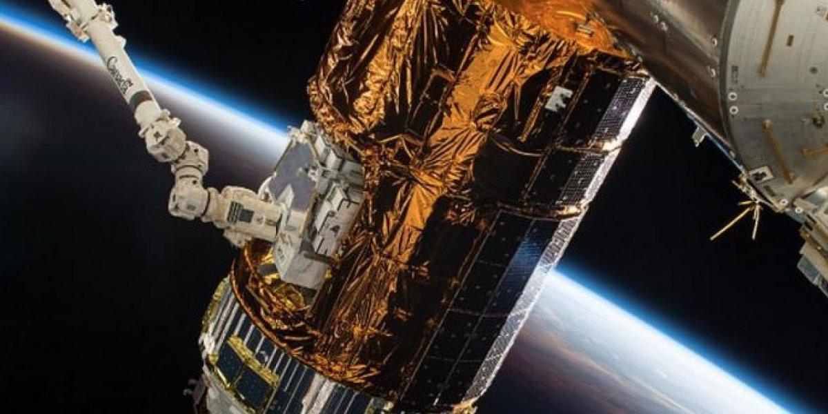 """Problemas en la Estación Espacial Internacional: científicos alertan por """"infección extraterrestre"""" que pondría en peligro a los astronautas"""