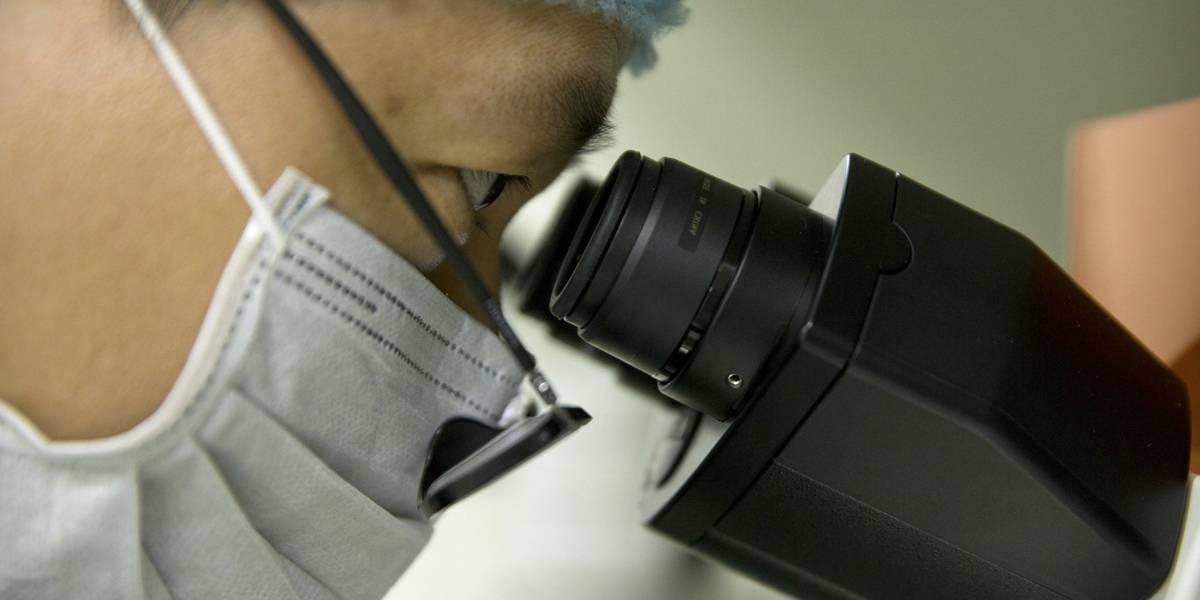 Profesor de Biotecnología es acusado de participar en experimento Chino de bebes alterados geneticamente