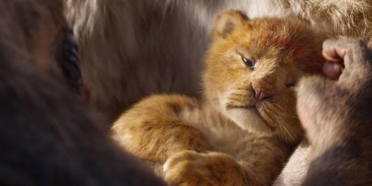 El detalle de 'El Rey León' que arruinará la infancia de muchos