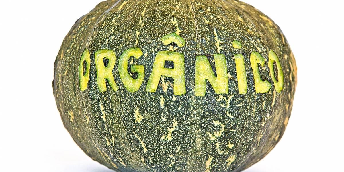 Orgânicos crescem 20% ao ano no país com maior busca por alimentos sustentáveis