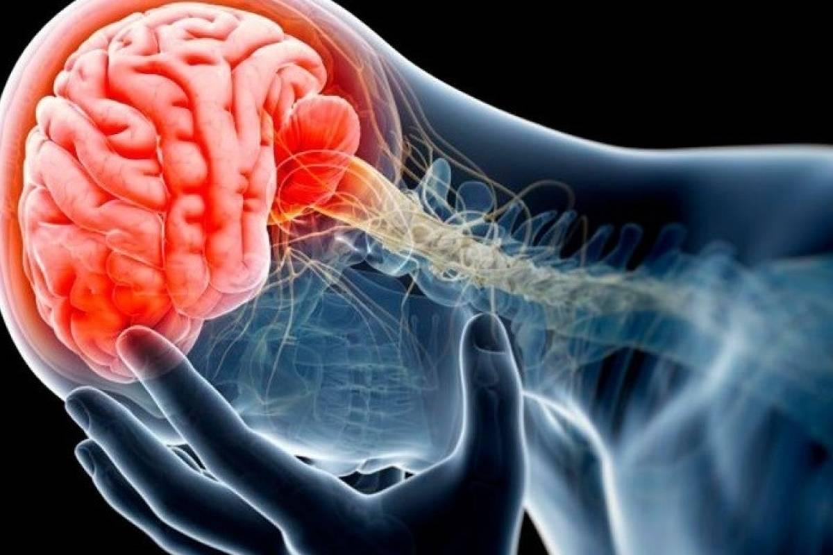 Científicos afirman que la enfermedad del Parkinson se origina en los Intestinos