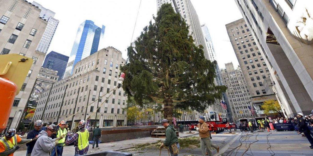 Pareja boricua donan árbol de Navidad del Rockefeller Center