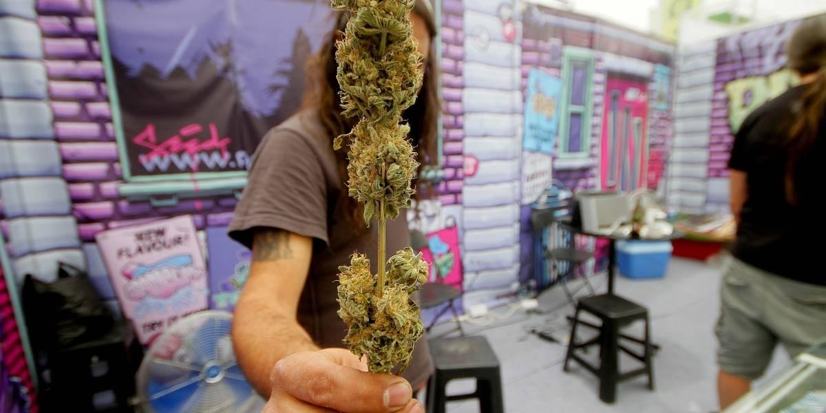 Expoweed 2018: Santiago alberga la fiesta más grande del cannabis en Latinoamérica