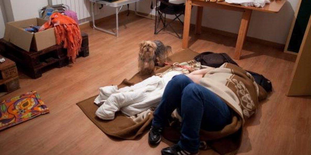Revelan por qué las mujeres disfrutan dormir con sus perros que con sus parejas