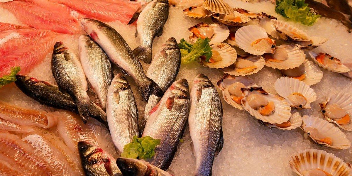 Conheça os alimentos ricos em vitamina B12 poderosíssimos no combate à anemia