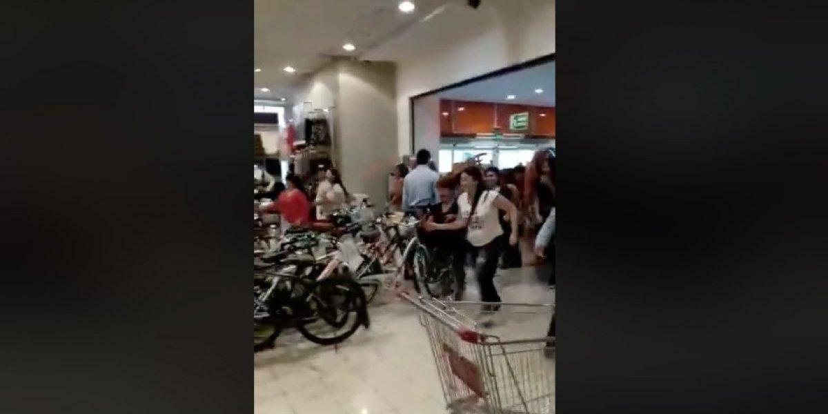 """Los """"duendes mágicos"""" otra vez: minutos de locura en tienda de Puente Alto por los peluches navideños de moda"""